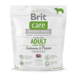 BRIT CARE 1kg ADULT SALMON POTATO N GRAIN-FREE