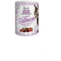 BRIT CARE SNACK CAT SUPERFRUITS SALMON 100G